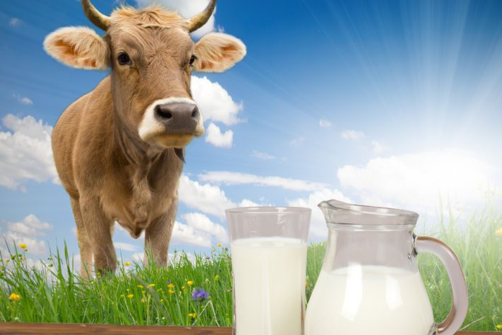 Milk alternative drinks and iodine concern